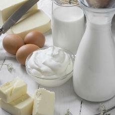Productos lácteos Pastinata