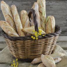 Pan rústico Pastinata